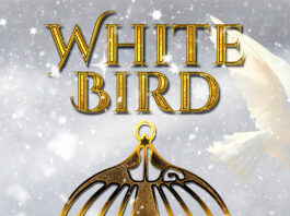WHITE BIRD A Christmas Story from Dennis Lowery